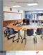 ST ANTHONY TRI PARISH SCHOOL CASE STUDY 圣·安东尼·三教区学校的个案研究